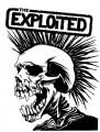 danexploited
