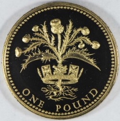 Moneta > 1svaras, 1984 - Jungtinė Karalystė  - reverse