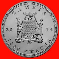 Moneta > 1000kwacha, 2014 - Zambia  (Afrykańska przyroda - Lew afrykański) - obverse
