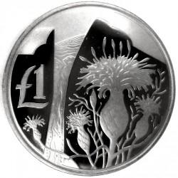 Монета > 1фунт, 2006 - Кипр  (Дикая природа Кипра - Centaurea Akamantis) - reverse