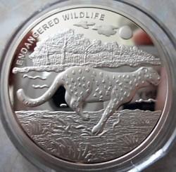 Moneta > 10franków, 2007 - Kongo - KRD  (Zagrożone gatunki - Gepard) - reverse