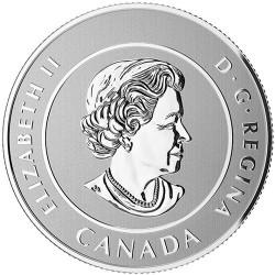 Moneta > 25dolarów, 2016 - Kanada  (Leśny elf) - obverse