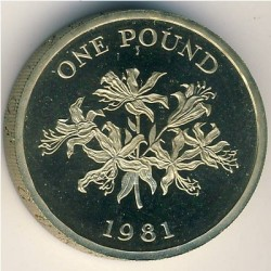Moneta > 1svaras, 1981 - Gernsis  - reverse