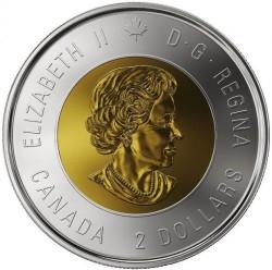 Moneta > 2dolary, 2018 - Kanada  (100 rocznica - Zakończenie I Wojny Światowej, Kolorowana) - reverse