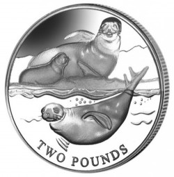 Moneta > 2funty, 2017 - Brytyjskie Terytorium Antarktyczne  (Krabojad foczy) - obverse