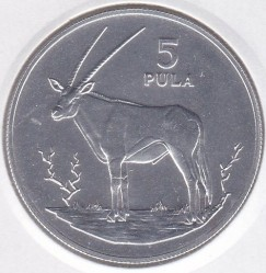 Münze > 5Pula, 1978 - Botswana  (Gemsbok) - obverse