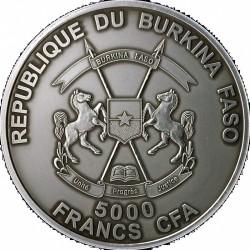 Монета > 5000франков, 2013 - Буркина Фасо  (Детёныш смилодона) - obverse