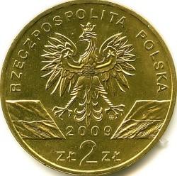 Coin > 2zlote, 2009 - Poland  (European green lizard) - obverse