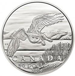 Moneta > 50dolarów, 2014 - Kanada  (Puchacz śnieżny) - reverse